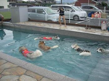 13.09水泳部c001.jpg